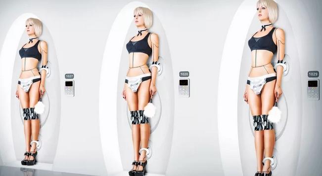 female sex robots